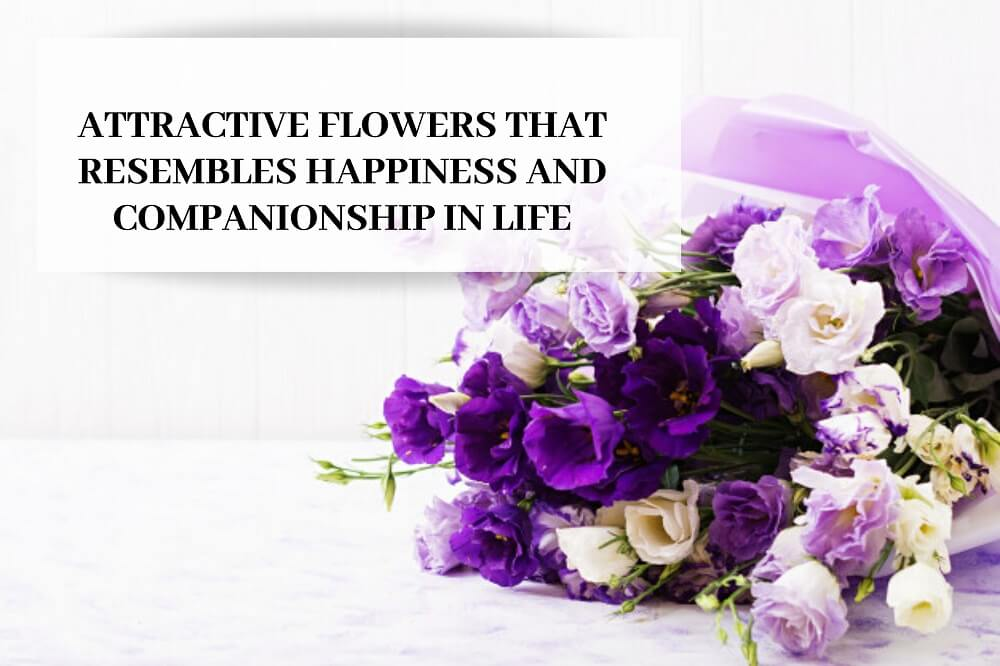 Attractive-Flowers-that-Resembles-Happiness-and-Companionship-in-Life-1